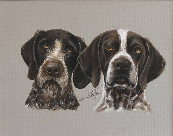 German Pointer Painting - German Pointer by Daniele Trottier