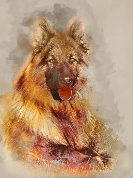 Photograph - German Shepherd 2 by Ericamaxine Price
