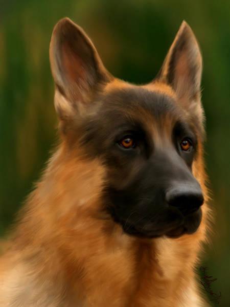 Service Dog Painting - German Shepherd by Becky Herrera