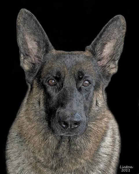 Digital Art - German Shepherd Dog 3 by Larry Linton