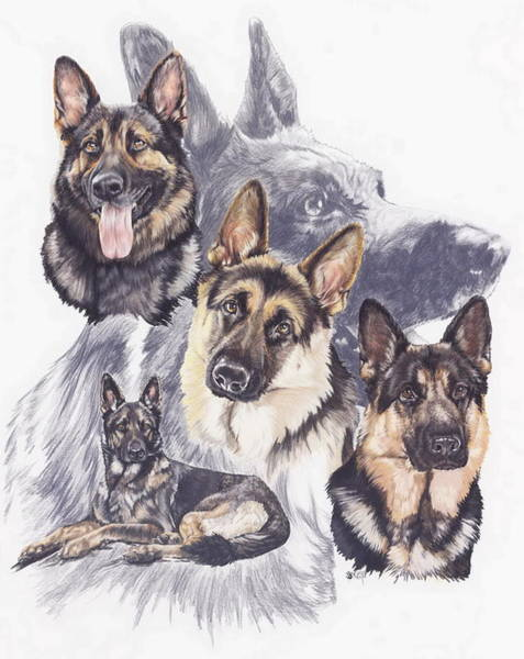 Wall Art - Mixed Media - German Shepherd Medley by Barbara Keith