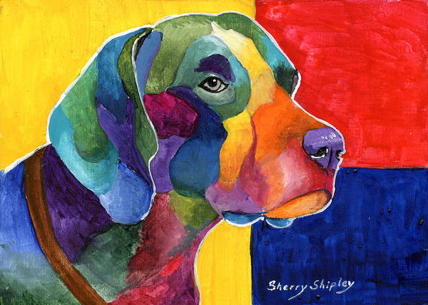 Painting - German Shorthair by Sherry Shipley