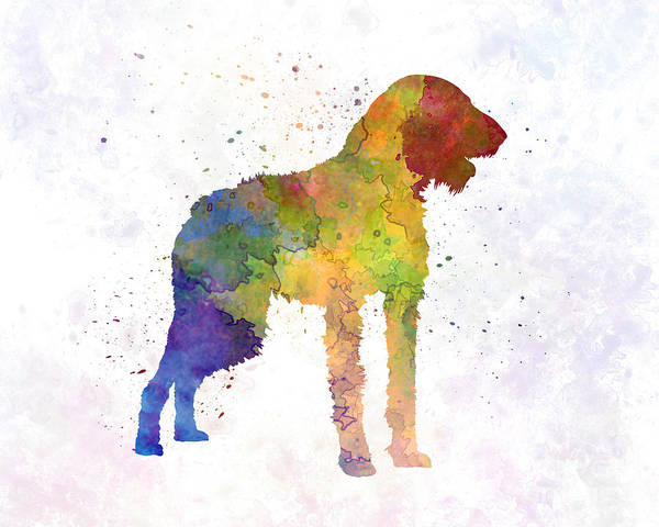 German Pointer Painting - German Wirehaired Pointer In Watercolor by Pablo Romero