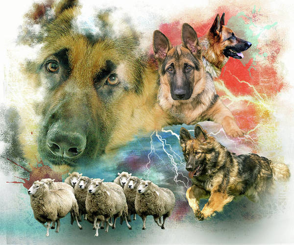 Golden Retriever Digital Art - German Shepherd Collage by Davina Washington