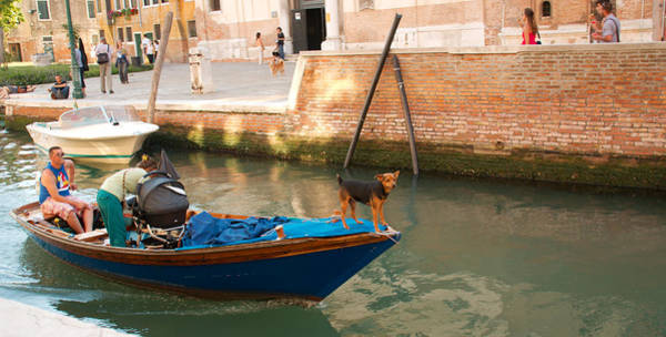 Wall Art - Photograph - Getting Around Venice by Michael Henderson