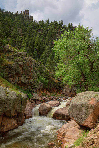 Photograph - Getting Lost In A Canyon Creek by James BO Insogna