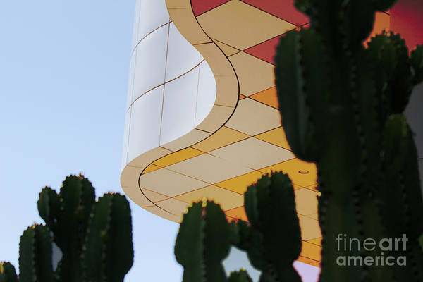 Wall Art - Photograph - Getty Architecture Cactus Color Curves  by Chuck Kuhn