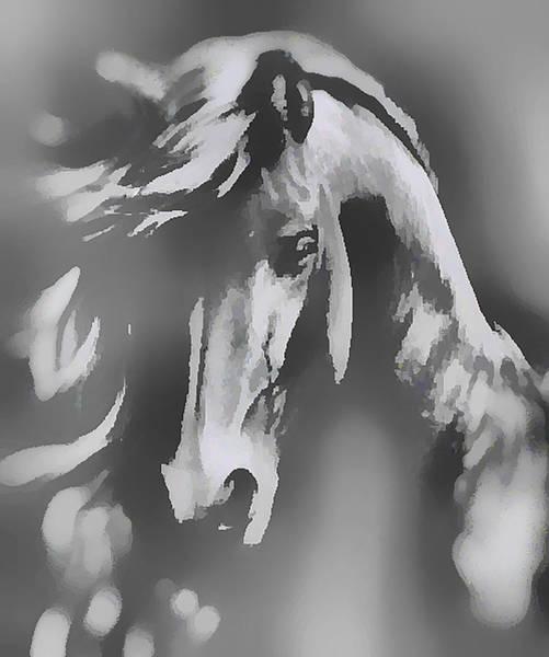 Digital Art - Ghost Horse by Barbara A Lane