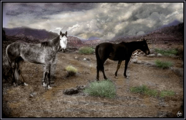 Photograph - Ghost Horses On A High Plain by Wayne King