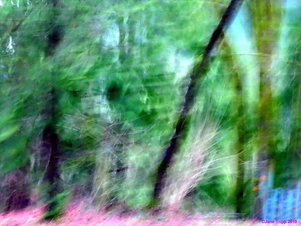 Real Ghosts Wall Art - Photograph - Ghost Leaning Against Tree by Jane Tripp