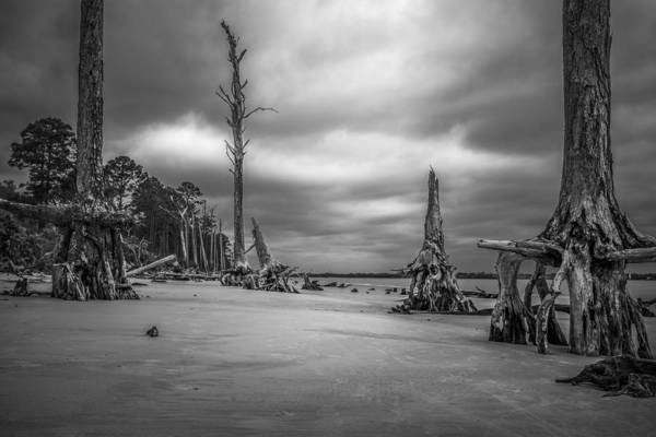 Photograph - Ghosts Of Giants Above The Sand - Bw by Chris Bordeleau