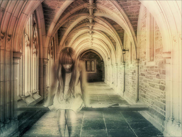 Photograph - Ghost Of The Abbey by Isabella Howard