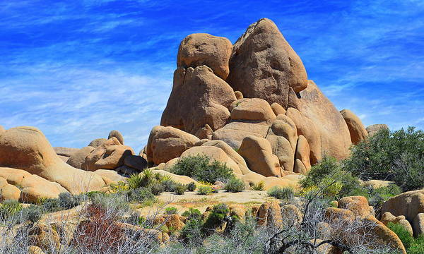 Photograph - Ghost Rock - Joshua Tree National Park by Glenn McCarthy Art and Photography