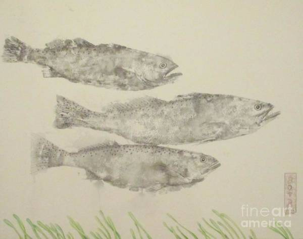 Inking Wall Art - Painting - Ghost Trout by Sue Bonnar