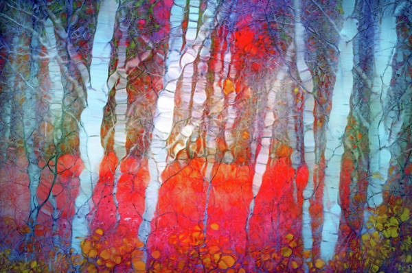 Distortions Digital Art - Ghosts In The Autumn Forest by Tara Turner