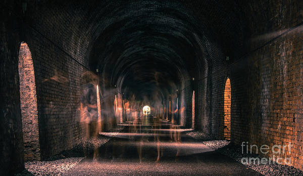 Photograph - Ghosts Of Durrow Tunnel by Marc Daly