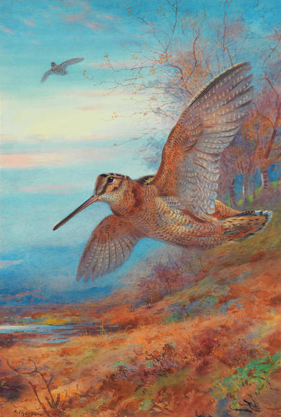 Wall Art - Painting - Ghosts Of The Twilight by Archibald Thorburn