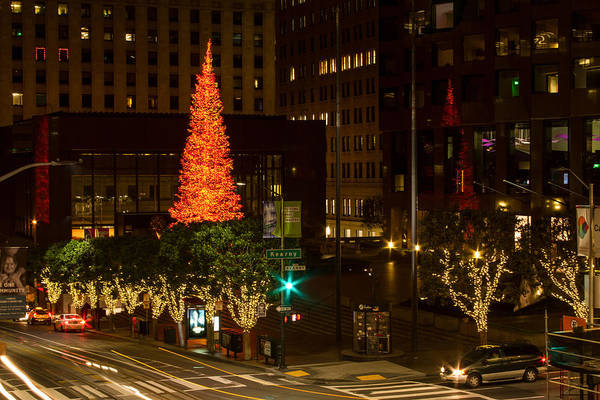 Photograph - Giannini Plaza Christmas Lights And Tree by Bonnie Follett