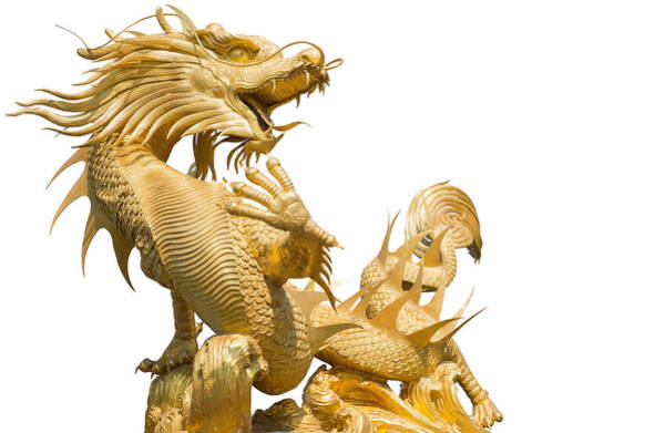 Chinese New Year Photograph - Giant Golden Chinese Dragon On Isolate Background by Anek Suwannaphoom