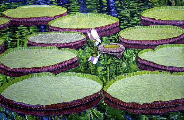Manuel Wall Art - Painting - Giant Lily by Manuel Lopez
