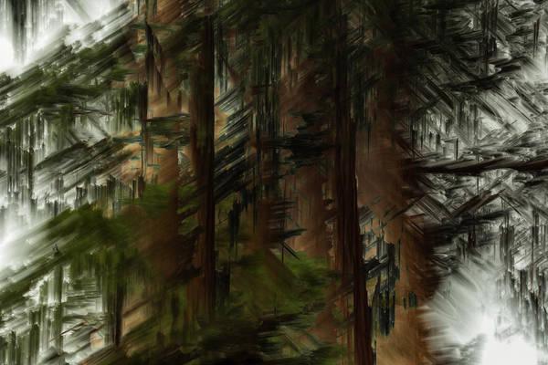 Photograph - Giant Sequoias by Deborah Hughes