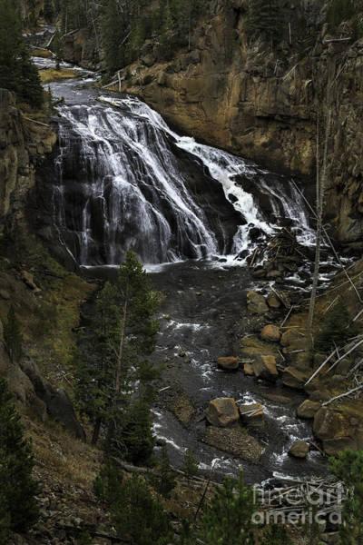 Photograph - Gibbons Falls, Yellowstone by Craig J Satterlee