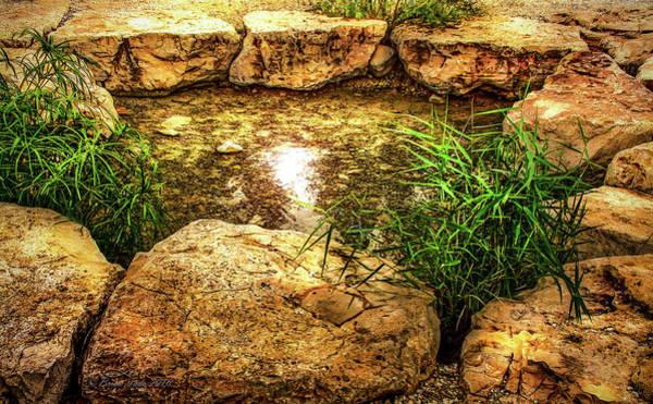 Photograph - Gideon's Spring, Israel by Brian Tada