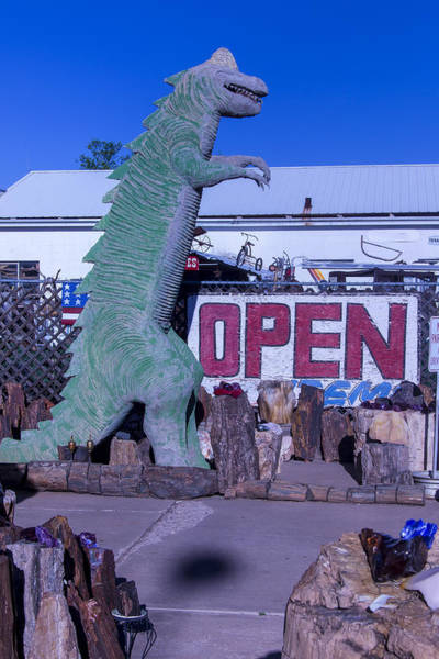 Crumbling Photograph - Gift Store Dinosaur  by Garry Gay