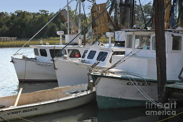 Photograph - Gifts Of A Southern Tide by Dale Powell