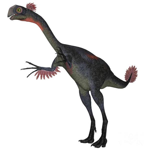 Primeval Painting - Gigantoraptor Dinosaur On White by Corey Ford