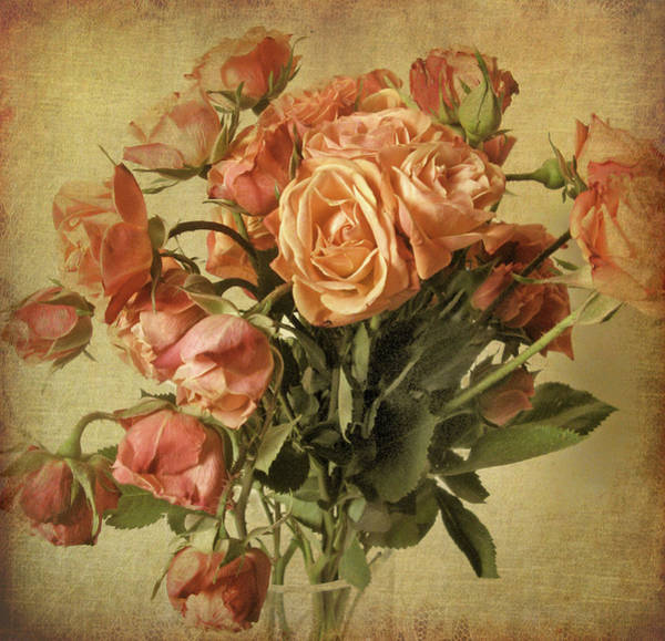Orange Rose Photograph - Gilded Rose Still Life by Jessica Jenney