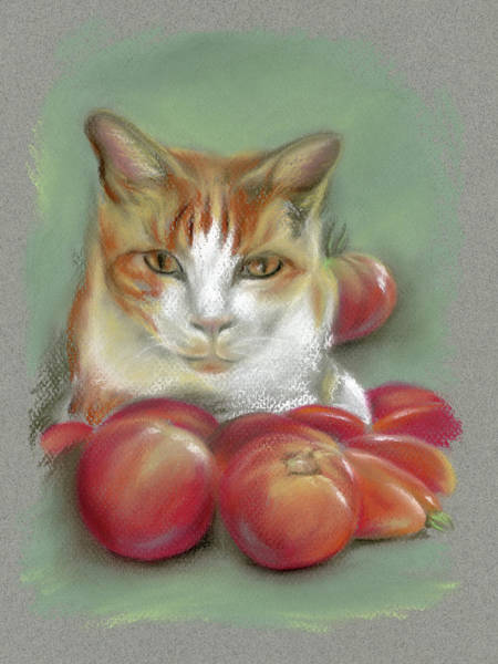 Pastel - Ginger And White Cat Among The Tomatoes by MM Anderson