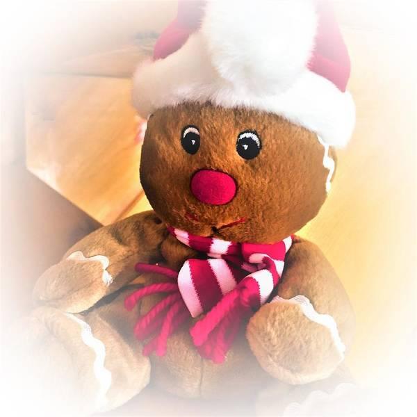 Photograph - Gingerbread Man by Cristina Stefan