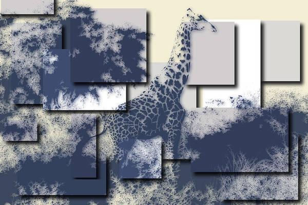 Wall Art - Photograph - Giraffe 3 by Joe Hamilton