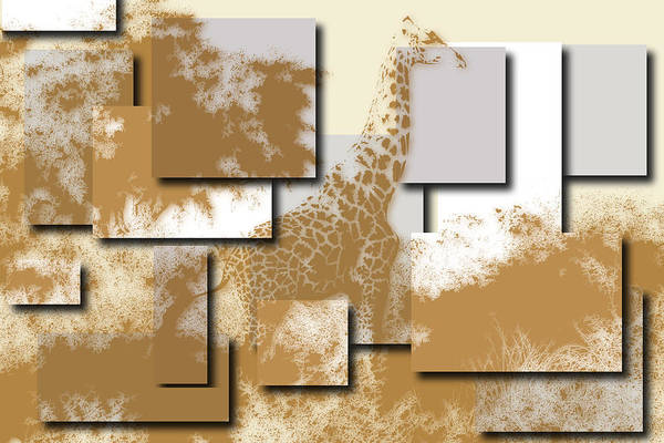Wall Art - Photograph - Giraffe 4 by Joe Hamilton