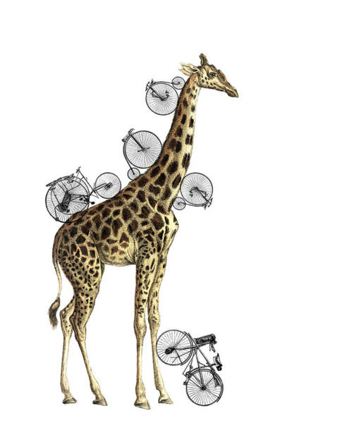 Wall Art - Digital Art - Giraffe And Bicycles by Madame Memento