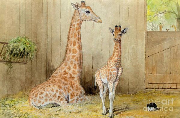 Wall Art - Painting - Giraffe And Young by Joseph Wolf