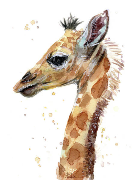 Giraffe Painting - Giraffe Baby Watercolor by Olga Shvartsur
