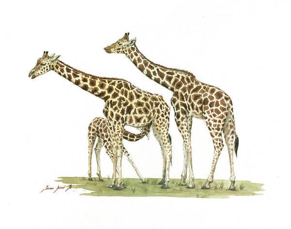 Wall Art - Painting - Giraffe Family by Juan Bosco