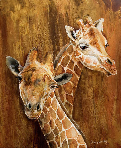 Painting - Giraffe Pair by Sherry Shipley
