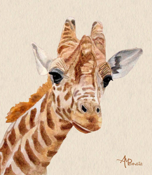 Painting - Giraffe Portrait by Angeles M Pomata