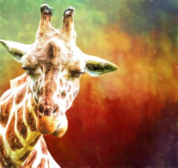 Photograph - Giraffe Reds by Alice Gipson