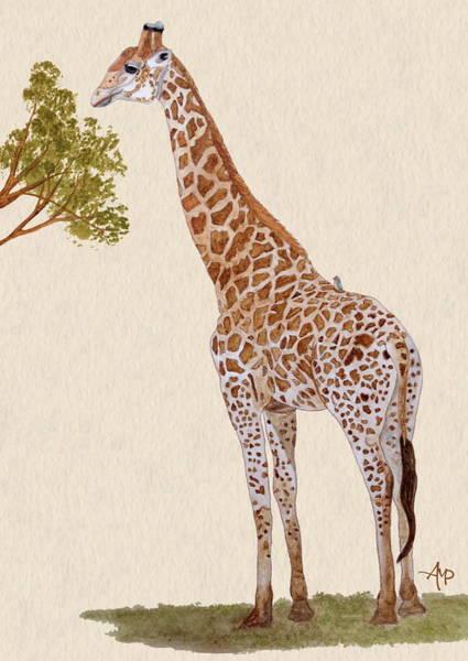 Painting - Giraffe Watercolor by Angeles M Pomata