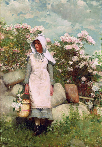 Painting - Girl And Laurel By Winslow Homer 1879 by Movie Poster Prints
