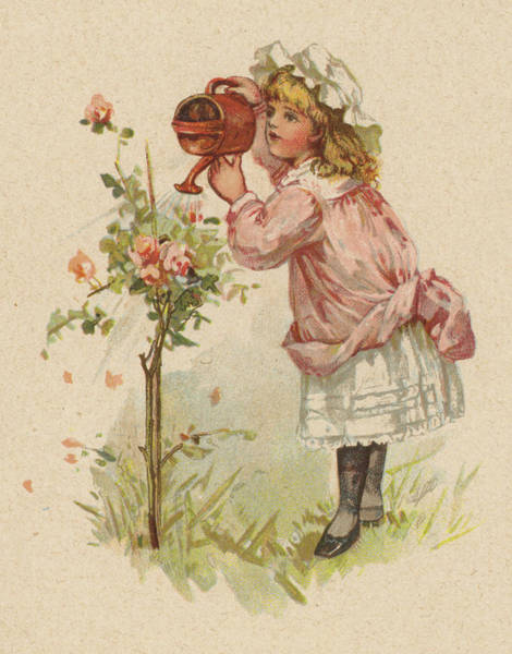 Watering Can Painting - Girl Watering Roses by English School