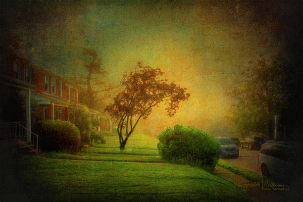 Photograph - Gittings Avenue by Reynaldo Williams