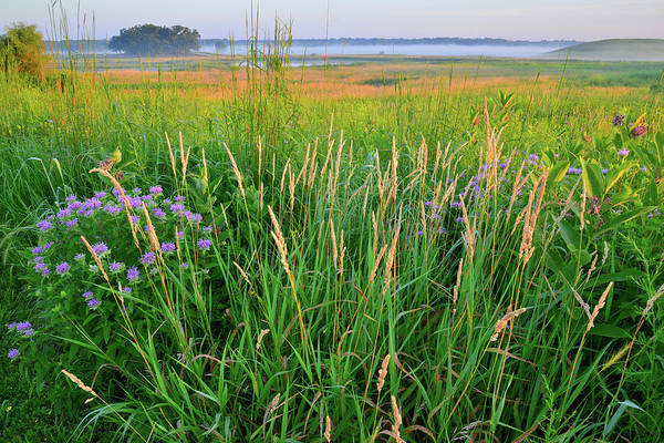 Photograph - Glacial Park Prairie And Wetlands At Sunrise by Ray Mathis