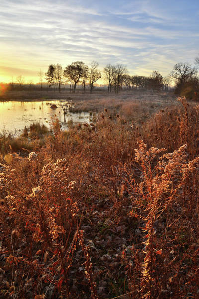 Photograph - Glacial Park Wetland At Sunrise by Ray Mathis
