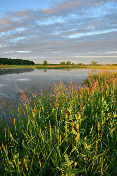 Photograph - Glacial Park Wetland Sunrise  by Ray Mathis