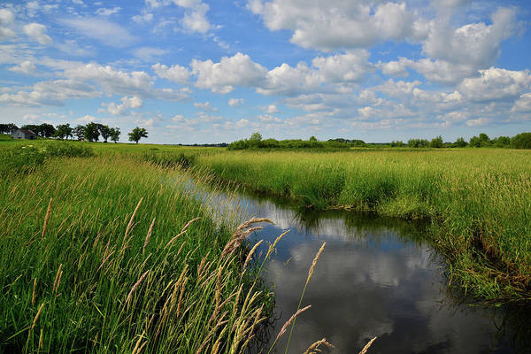 Photograph - Glacial Park Wetlands by Ray Mathis